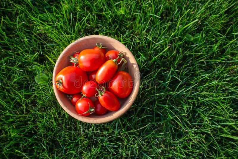 Κόκκινες ντομάτες σε ένα ξύλινο πιάτο στοκ εικόνες