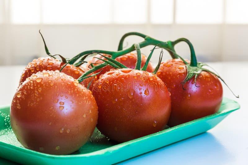 Κόκκινες ντομάτες σε ένα πιάτο στοκ φωτογραφίες