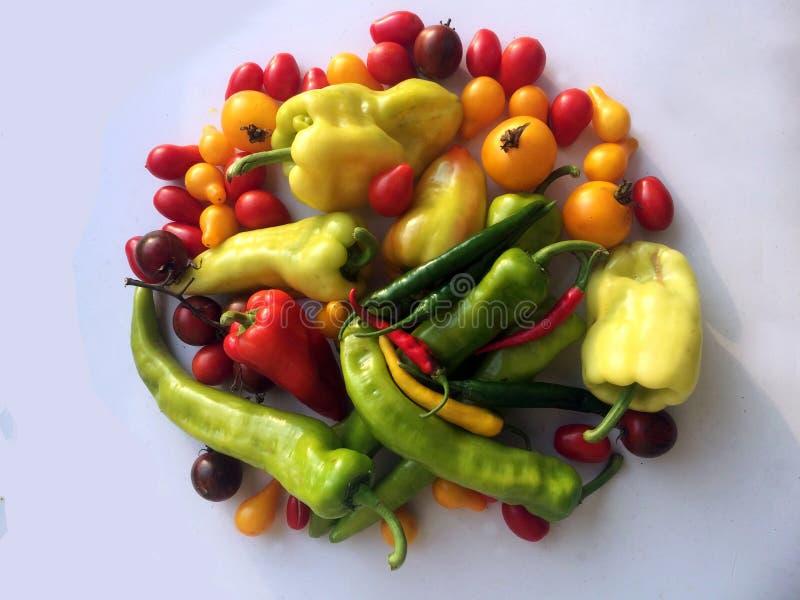 Κόκκινες πράσινες κίτρινες χρωματισμένες διάφορες ουγγρικές πάπρικα και ντομάτα στοκ φωτογραφίες