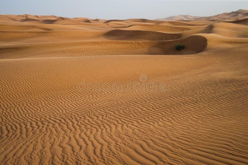 Download Κόκκινη έρημος στα εμιράτα του Ντουμπάι Στοκ Εικόνα - εικόνα από κύμα, με: 62700433