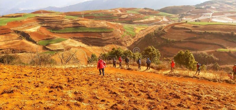 Κόκκινη γη στη yunnan επαρχία, Κίνα στοκ εικόνα με δικαίωμα ελεύθερης χρήσης
