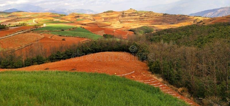 Κόκκινη γη στη yunnan επαρχία, Κίνα στοκ εικόνες