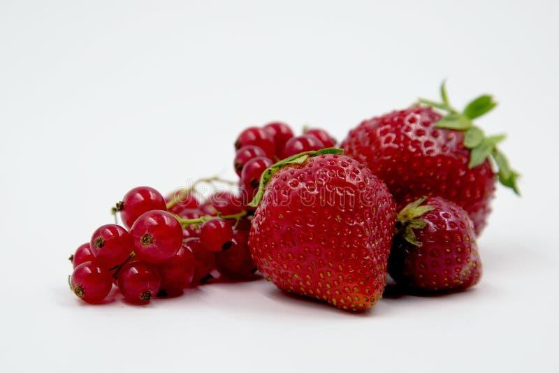 Κόκκινη ζωή φρούτων ακόμα στοκ φωτογραφία