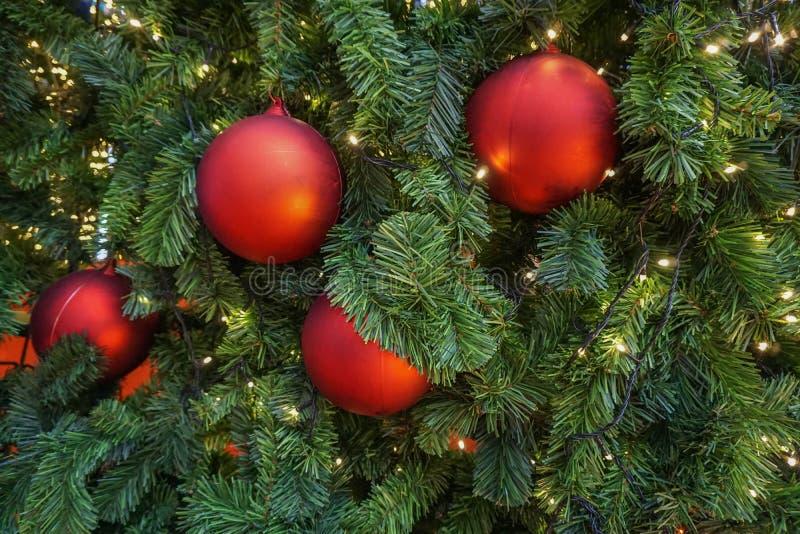 Κόκκινη διακόσμηση σφαιρών στο χριστουγεννιάτικο δέντρο στοκ φωτογραφίες με δικαίωμα ελεύθερης χρήσης