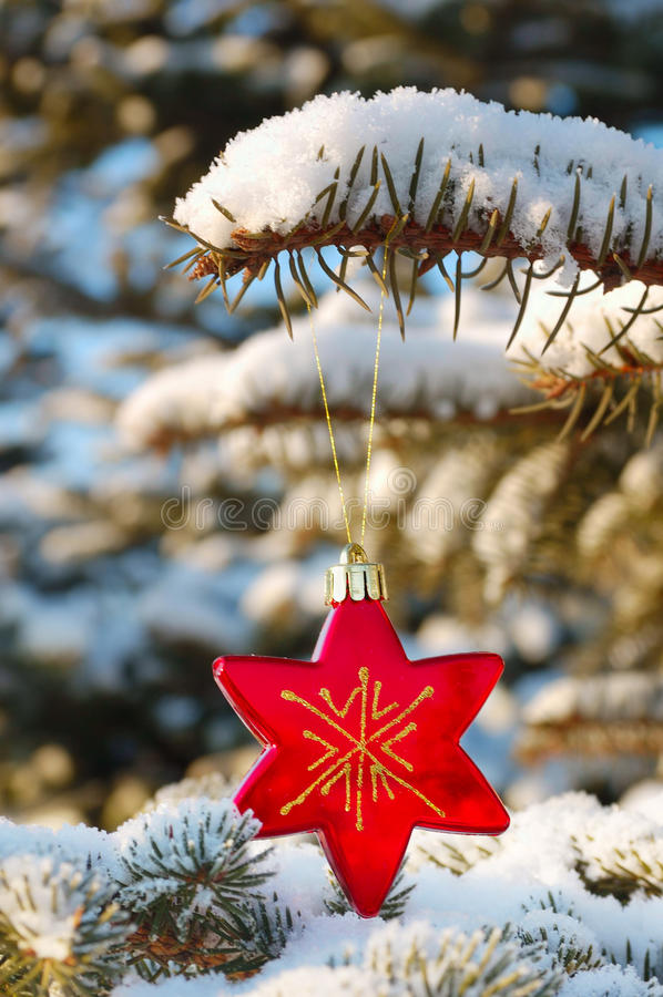 Κόκκινη διακόσμηση Χριστουγέννων αστεριών στοκ φωτογραφία με δικαίωμα ελεύθερης χρήσης