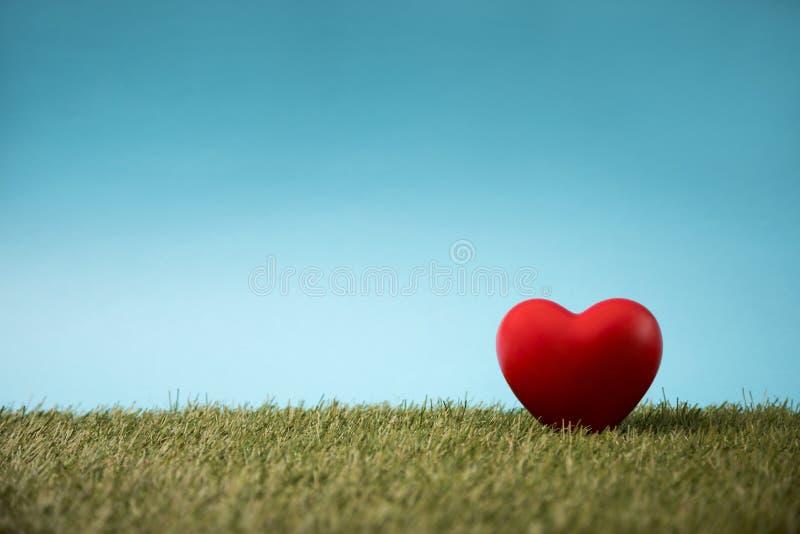 Κόκκινη καρδιά στην πράσινη χλόη στοκ φωτογραφία