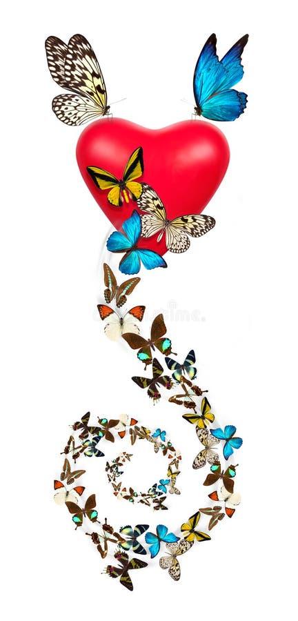 Κόκκινη καρδιά βαλεντίνων με την πεταλούδα στοκ εικόνες με δικαίωμα ελεύθερης χρήσης