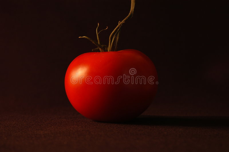 Download κόκκινη ντομάτα στοκ εικόνα. εικόνα από ώριμος, καλοκαίρι - 50505