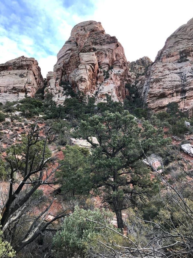 Κόκκινη περιοχή συντήρησης φαραγγιών βράχου, Νεβάδα, ΗΠΑ στοκ εικόνες με δικαίωμα ελεύθερης χρήσης