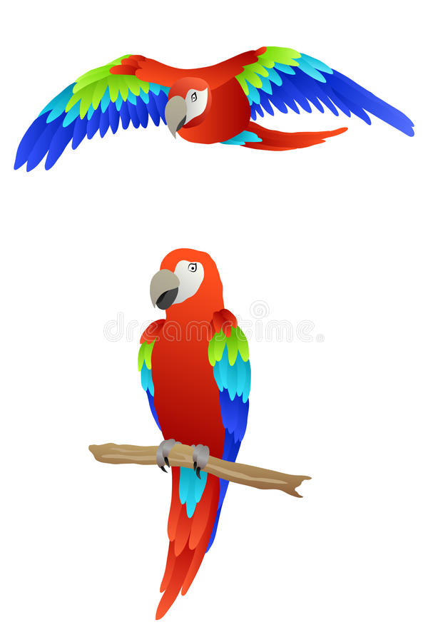 Κόκκινη πράσινη μπλε απεικόνιση παπαγάλων πουλιών macaw διανυσματική απεικόνιση