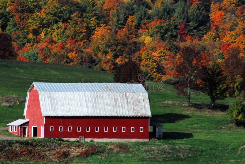 Κόκκινη σιταποθήκη φθινόπωρο-πτώσης με το κράτος της Νέας Υόρκης φύλλων πτώσης στοκ φωτογραφία με δικαίωμα ελεύθερης χρήσης