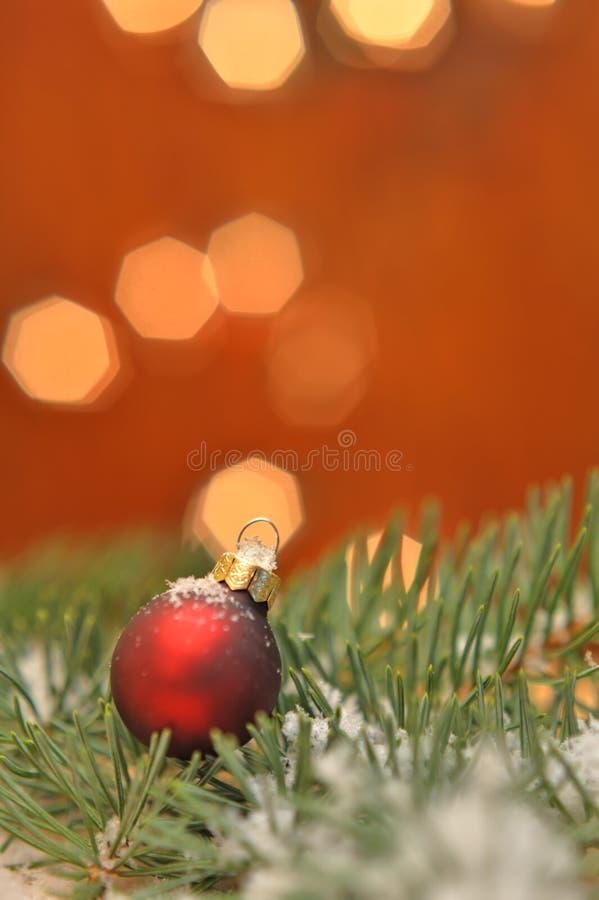 Κόκκινη σφαίρα Χριστουγέννων στο πεύκο στοκ εικόνες