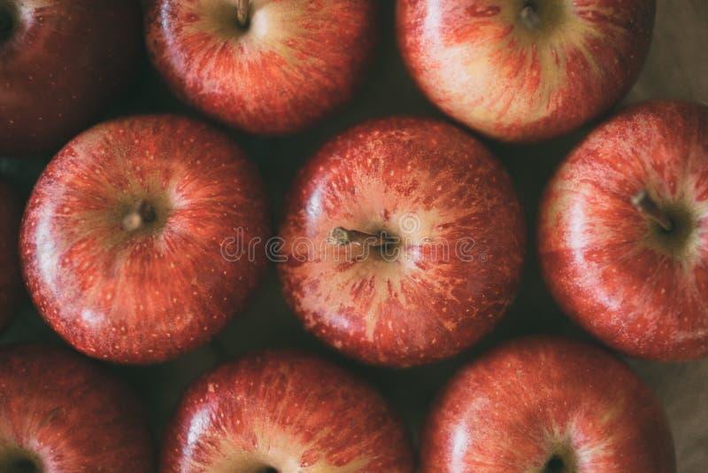 Κόκκινη ώριμη σύσταση υποβάθρου φρούτων μήλων Έννοια συγκομιδών της Apple στοκ εικόνα με δικαίωμα ελεύθερης χρήσης