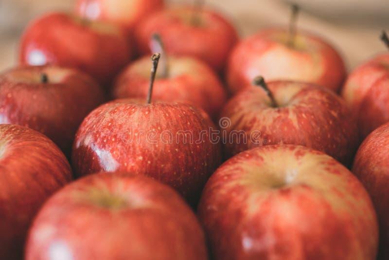 Κόκκινη ώριμη σύσταση υποβάθρου φρούτων μήλων Έννοια συγκομιδών της Apple στοκ εικόνες