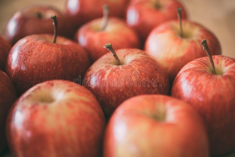 Κόκκινη ώριμη σύσταση υποβάθρου φρούτων μήλων Έννοια συγκομιδών της Apple στοκ φωτογραφία με δικαίωμα ελεύθερης χρήσης