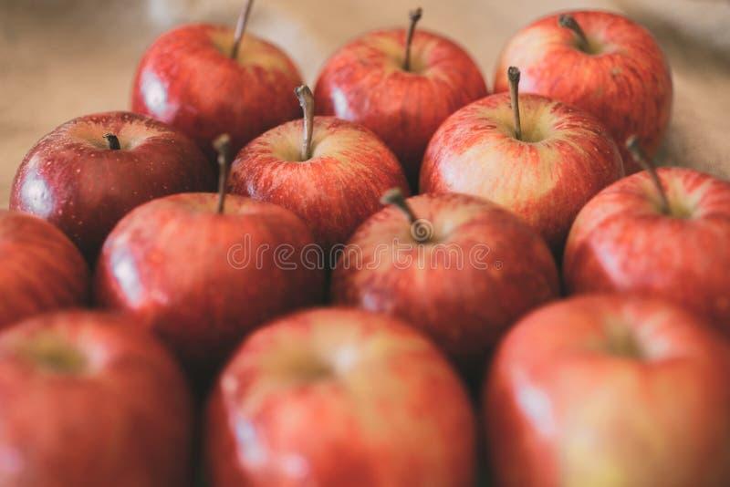 Κόκκινη ώριμη σύσταση υποβάθρου φρούτων μήλων Έννοια συγκομιδών της Apple στοκ φωτογραφία