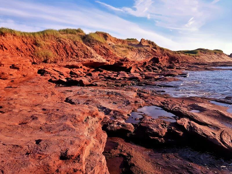 Κόκκινοι απότομοι βράχοι - νησί του Edward πριγκήπων - Καναδάς στοκ φωτογραφία