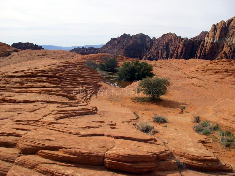 κόκκινοι βράχοι προτύπων στοκ εικόνα