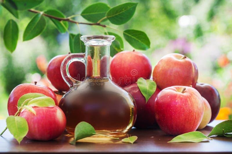 Κόκκινοι μήλο και χυμός ή στοκ εικόνες με δικαίωμα ελεύθερης χρήσης