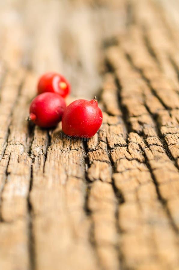 Κόκκινοι σπόροι στο ξύλινο υπόβαθρο στοκ φωτογραφία