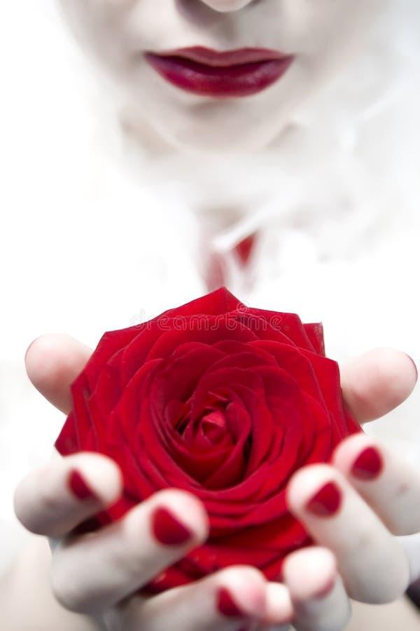 κόκκινος αυξήθηκε γυναί&k στοκ εικόνες