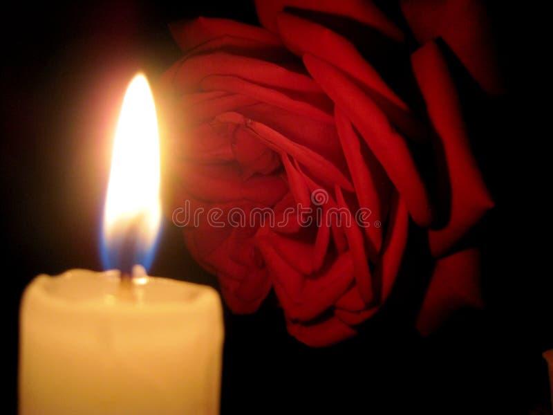 Κόκκινος αυξήθηκε και ένα κερί στο σκοτάδι στοκ φωτογραφία