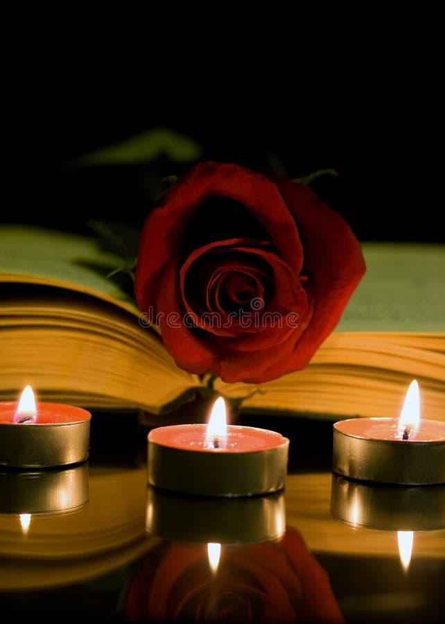 Κόκκινος αυξήθηκε και βιβλίο στοκ εικόνα