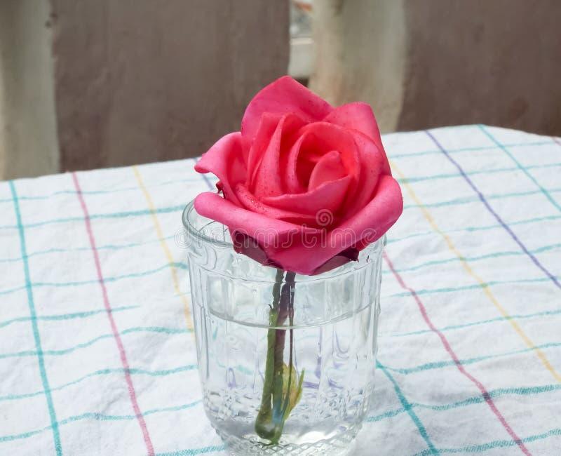Κόκκινος αυξήθηκε λουλούδι επάνω στο γυαλί στοκ φωτογραφία με δικαίωμα ελεύθερης χρήσης