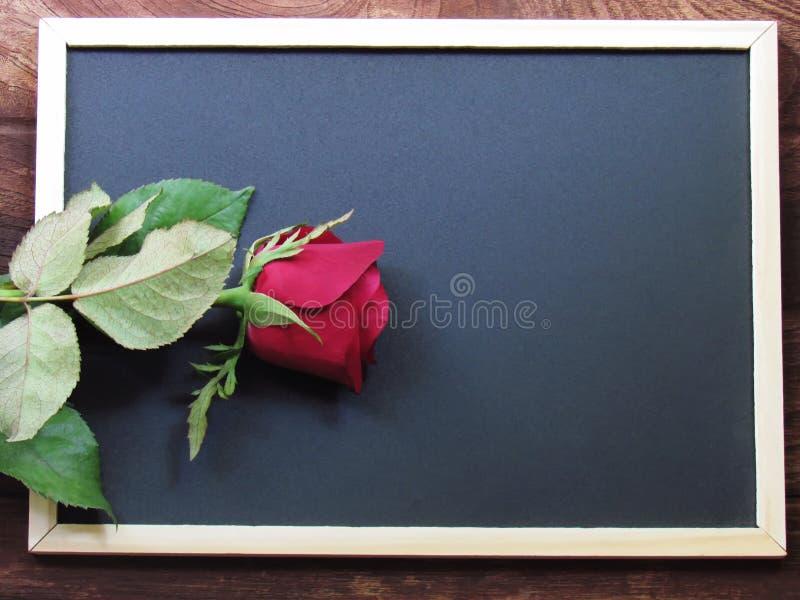 Κόκκινος αυξήθηκε τοποθετημένος στον πίνακα στο ξύλινο πάτωμα στοκ φωτογραφίες με δικαίωμα ελεύθερης χρήσης