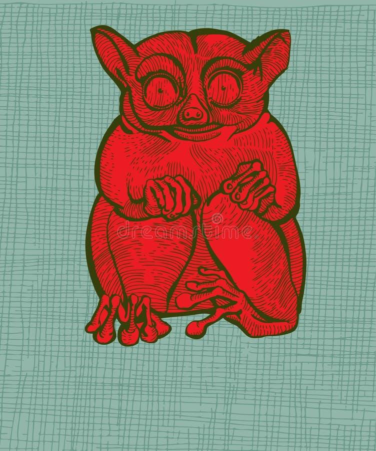 κόκκινος πιό tarsier ελεύθερη απεικόνιση δικαιώματος