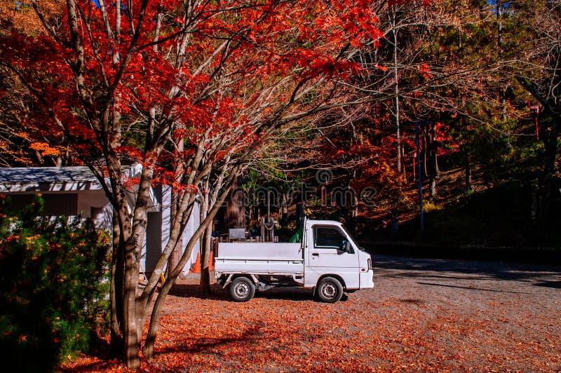 Κόκκινος σφένδαμνος φθινοπώρου και άσπρο ανοιχτό φορτηγό στο πάρκο Arakurayama Sengen παγοδών Chureito - Fujiyoshida στοκ εικόνες