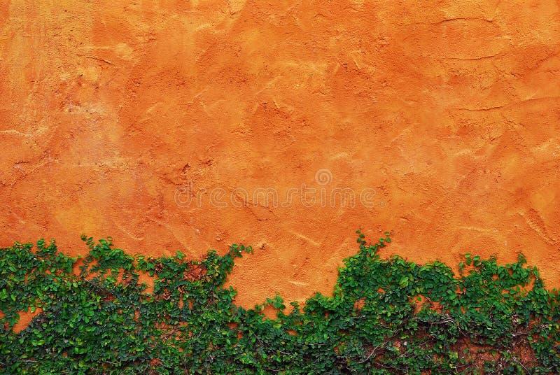κόκκινος τοίχος πράσινων &ph στοκ φωτογραφίες