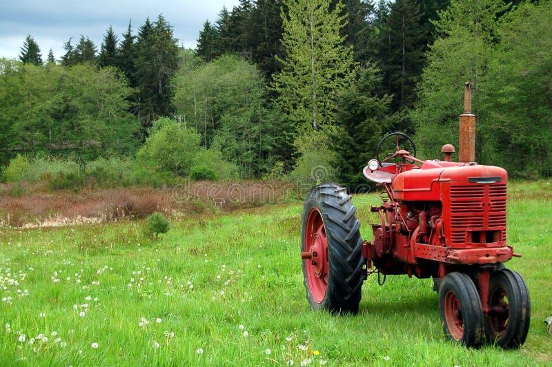 κόκκινος τρύγος τρακτέρ στοκ φωτογραφία με δικαίωμα ελεύθερης χρήσης