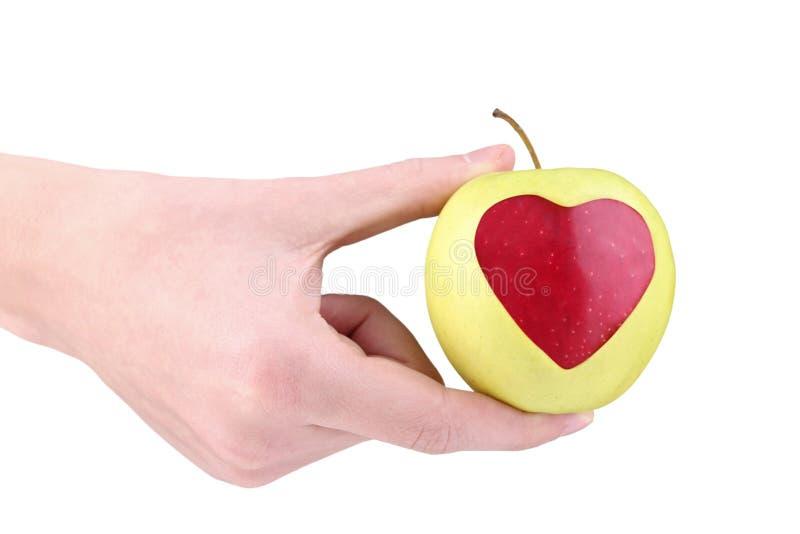 κόκκινο εκμετάλλευσης μήλων στοκ εικόνες