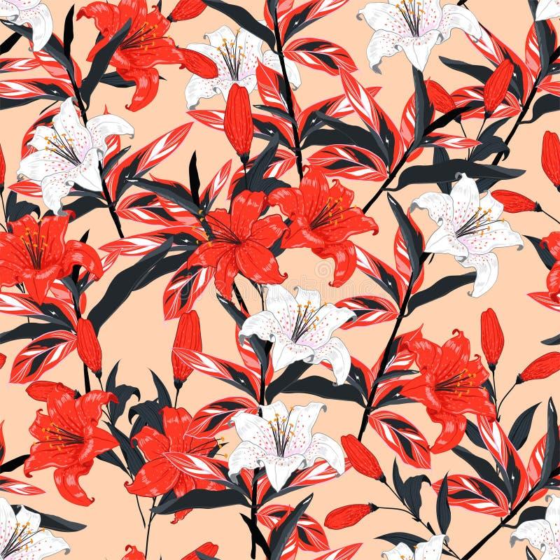 Κόκκινο και άσπρο βοτανικό άνευ ραφής σχέδιο διανυσματικό δ λουλουδιών κρίνων απεικόνιση αποθεμάτων
