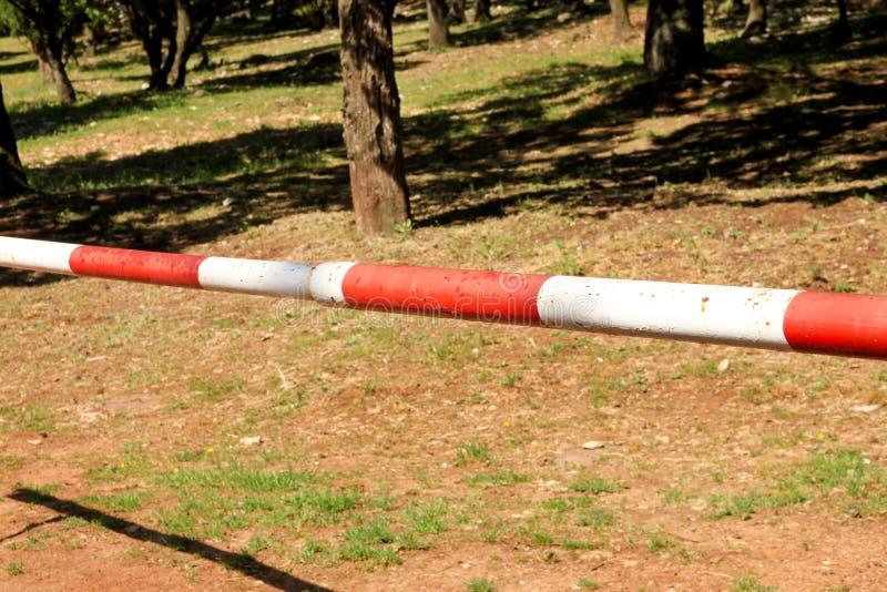 Κόκκινο και άσπρο εμπόδιο προειδοποιητικών σημαδιών στην πράσινη χλόη στο υπόβαθρο φύσης Μεταφορά, κανονισμός κυκλοφορίας στοκ φωτογραφία με δικαίωμα ελεύθερης χρήσης