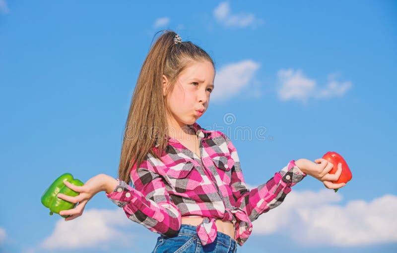 Κόκκινο και πράσινο υπόβαθρο ουρανού πιπεριών λαβής κοριτσιών παιδιών Παιδί που παρουσιάζει τα είδη πιπεριού Homegrown λαχανικά σ στοκ φωτογραφία