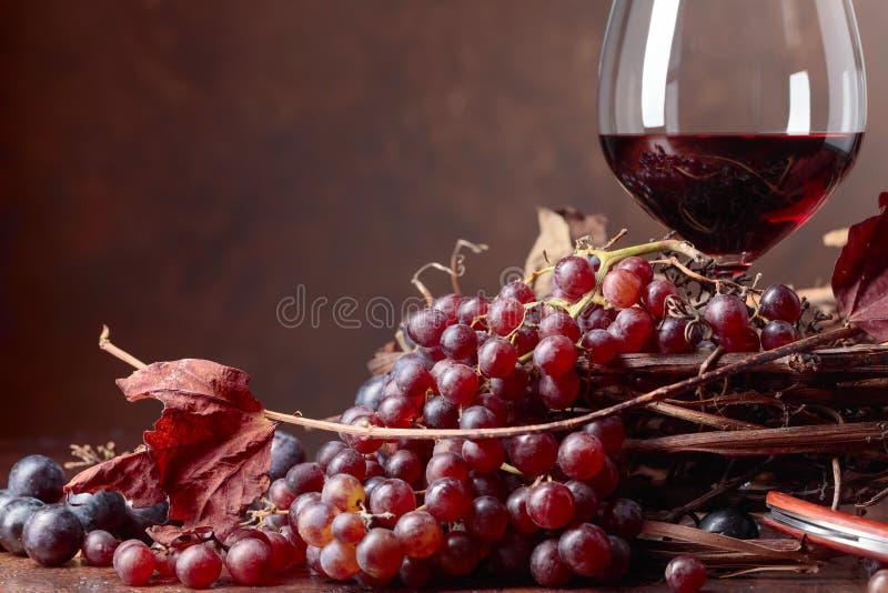 Κόκκινο κρασί και φρέσκα σταφύλια με τα στεγνωμένα φύλλα αμπέλων στοκ εικόνα