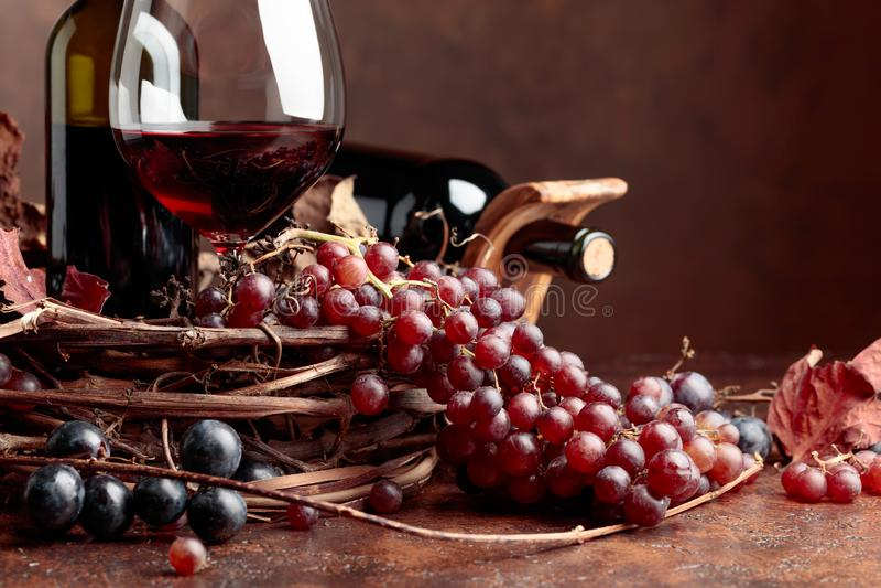 Κόκκινο κρασί και φρέσκα σταφύλια με τα στεγνωμένα φύλλα αμπέλων στοκ εικόνα με δικαίωμα ελεύθερης χρήσης