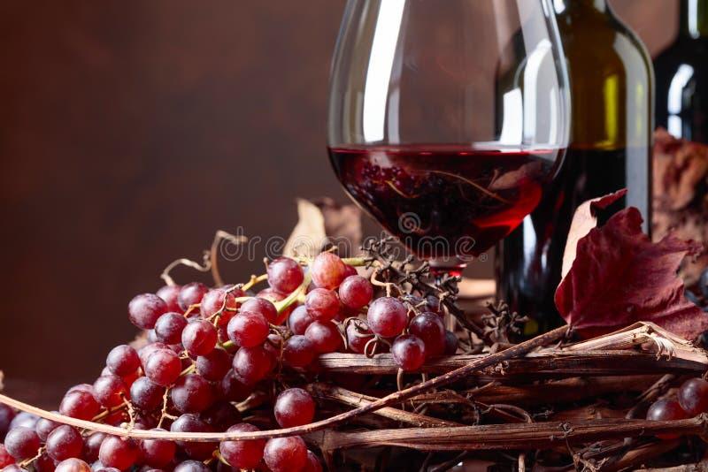 Κόκκινο κρασί και φρέσκα σταφύλια με τα στεγνωμένα φύλλα αμπέλων στοκ φωτογραφίες με δικαίωμα ελεύθερης χρήσης