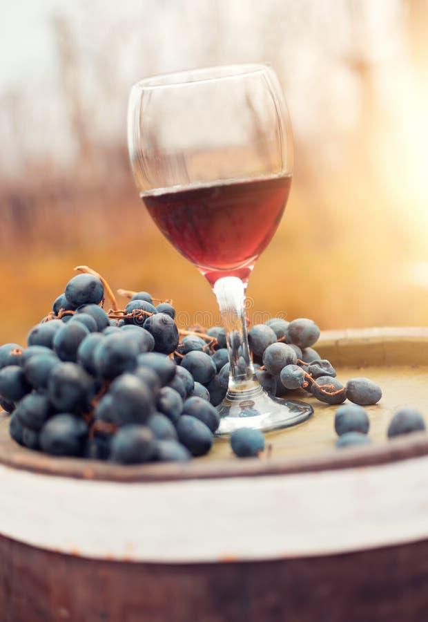 Κόκκινο κρασί και φρέσκα σταφύλια στοκ εικόνες