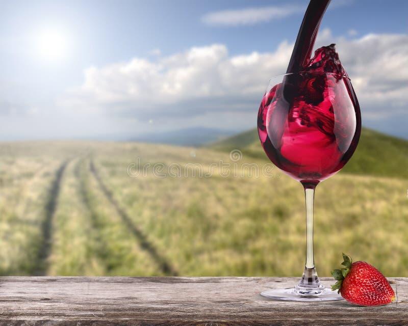 Κόκκινο κρασί με το υπόβαθρο θερινής σκηνής στοκ εικόνες με δικαίωμα ελεύθερης χρήσης
