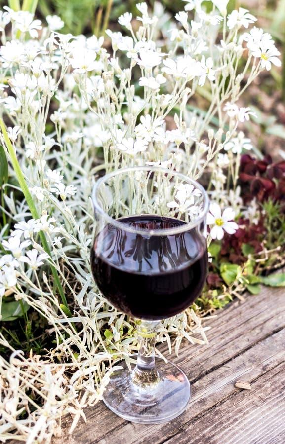 Κόκκινο κρασί στο γυαλί και τα άσπρα λουλούδια στοκ εικόνες