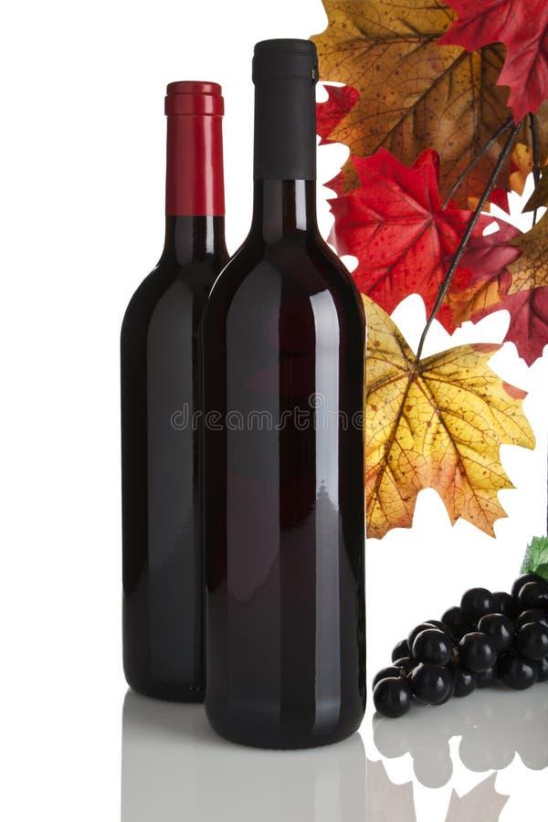 κόκκινο κρασί φύλλων σταφ&u στοκ φωτογραφία