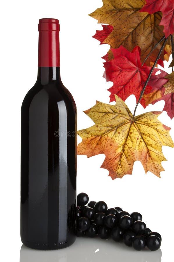 Download κόκκινο κρασί φύλλων σταφ&u Στοκ Εικόνες - εικόνα από φύλλα, εμφιαλωτών: 13182800