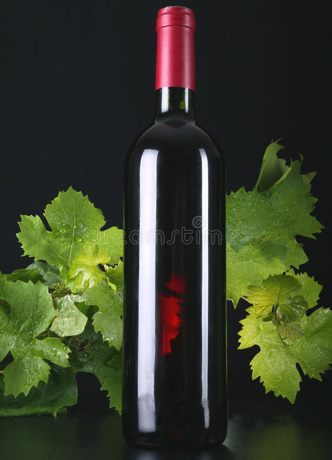 κόκκινο κρασί στοκ εικόνες