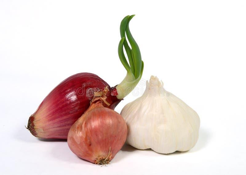 κόκκινο κρεμμύδι κρεμμυδιών σκόρδου στοκ εικόνες