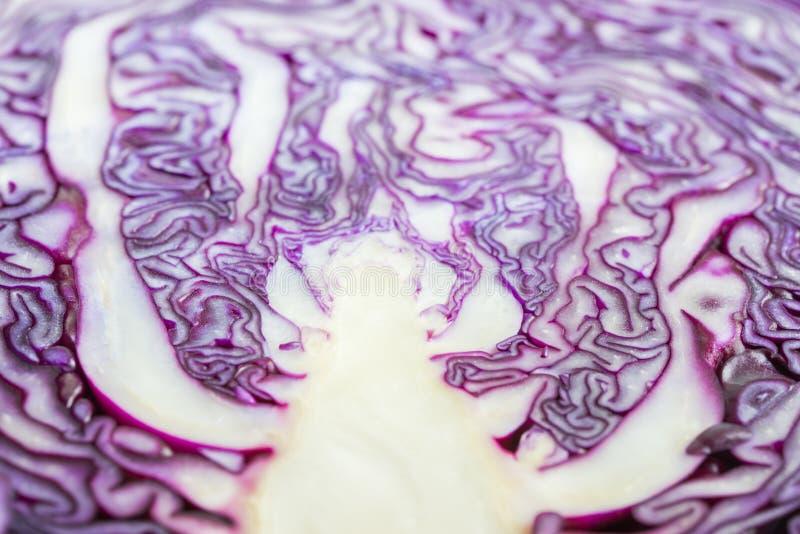 Κόκκινο λάχανο Halfed ως φυτικό υπόβαθρο τροφίμων κουζινών στοκ φωτογραφία με δικαίωμα ελεύθερης χρήσης