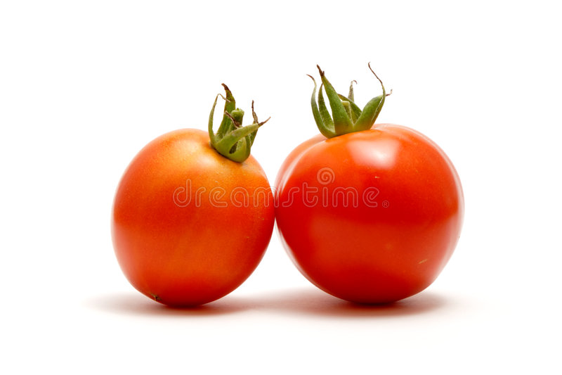 κόκκινο λευκό ντοματών backgrou στοκ φωτογραφία με δικαίωμα ελεύθερης χρήσης