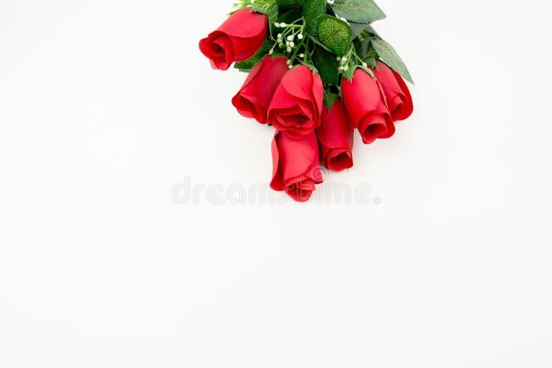 κόκκινο λευκό τριαντάφυλλων ανασκόπησης στοκ φωτογραφία